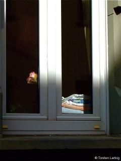waschrosenfenster.jpg